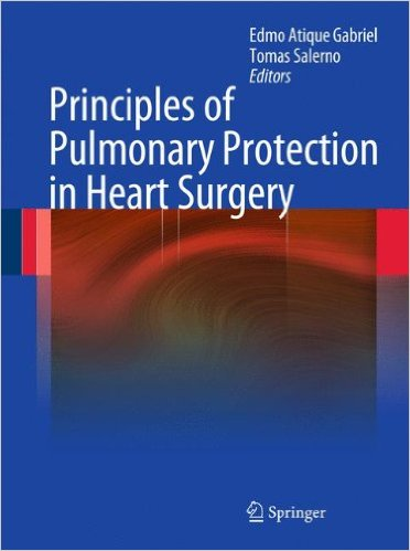 Principles of Pulmonary Protection in Heart Surgery 2010th Edition