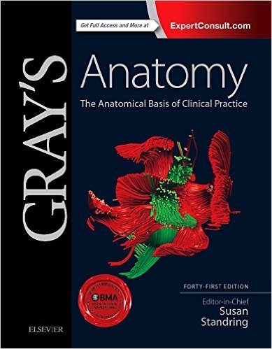 Gray's Anatomy: The Anatomical Basis of Clinical Practice, 41e 41st Edition