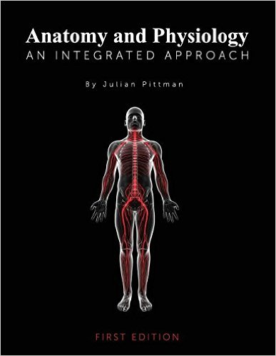 Anatomy and Physiology: An Integrated Approach First Edition/Binder-Ready Edition Edition