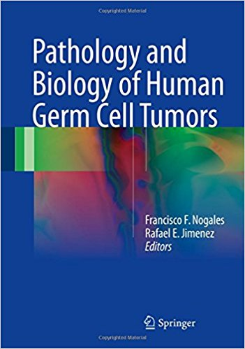 Pathology and Biology of Human Germ Cell Tumors 1st ed. 2017 Edition