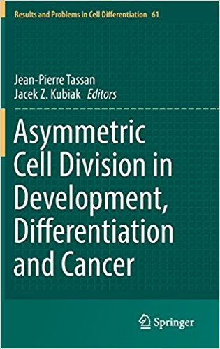 Asymmetric Cell Division in Development, Differentiation and Cancer (Results and Problems in Cell Differentiation) 1st ed. 2017 Edition